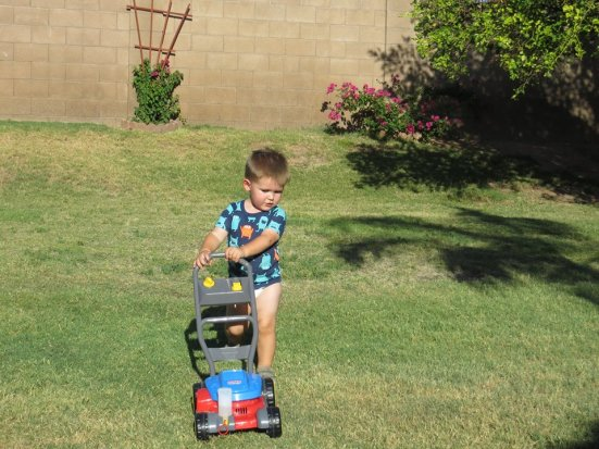 Coco lawn mower